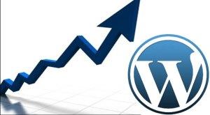 Wordpress-Pageviews